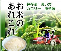 お米のあれこれ